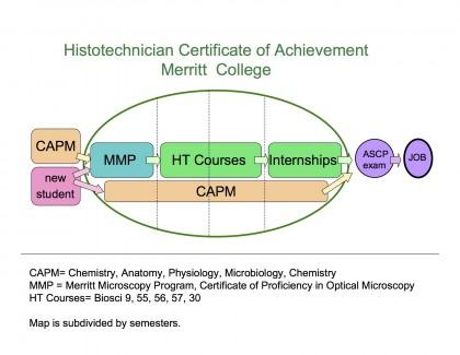 Histo chart - 1-12-14