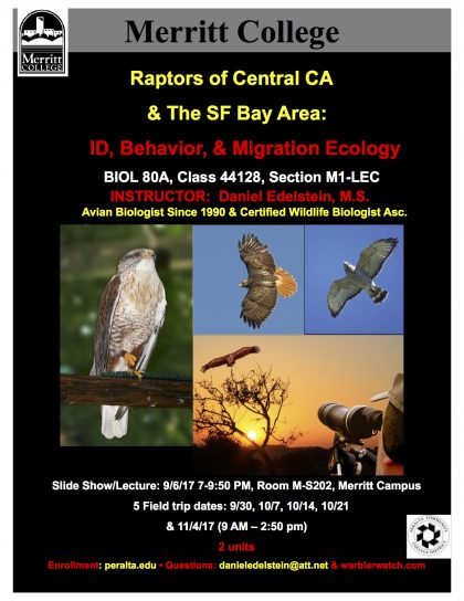 Still Space and Time Left (to 9/4) to Study Rare Raptors in the Wild; Enroll in BIOL 80A, Starts 9/6